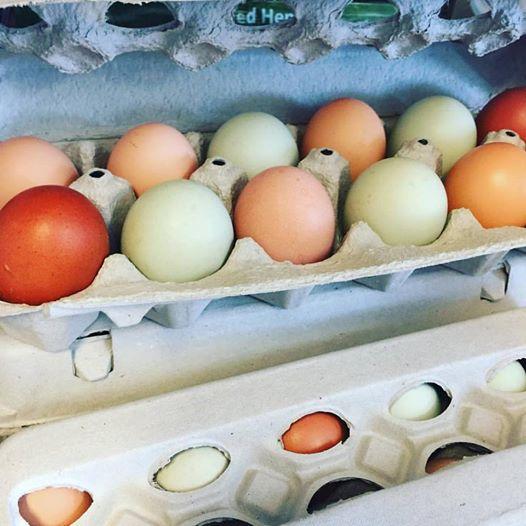 Organic. Local. Eggs...taste the breakfast rainbow!